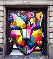 Cat Doors
