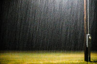 Downpour Under the Yard Light