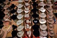 Coeboy hats