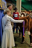 Hereford Queen