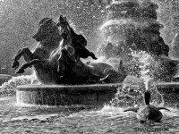 Fountain de l'observatoire