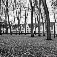Beginhof