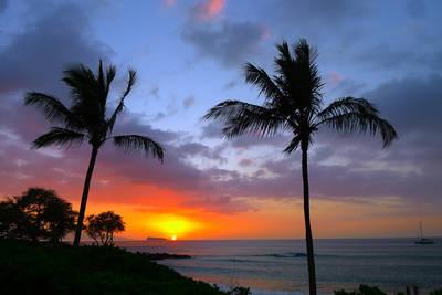 Recent Work-Maui