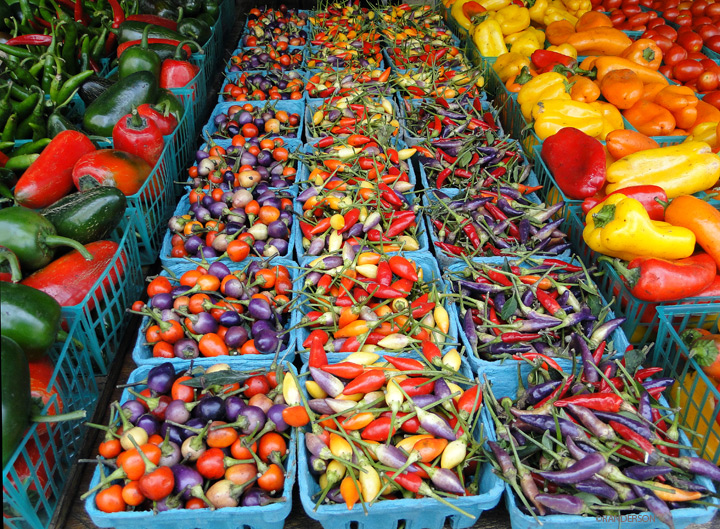peppers, photo