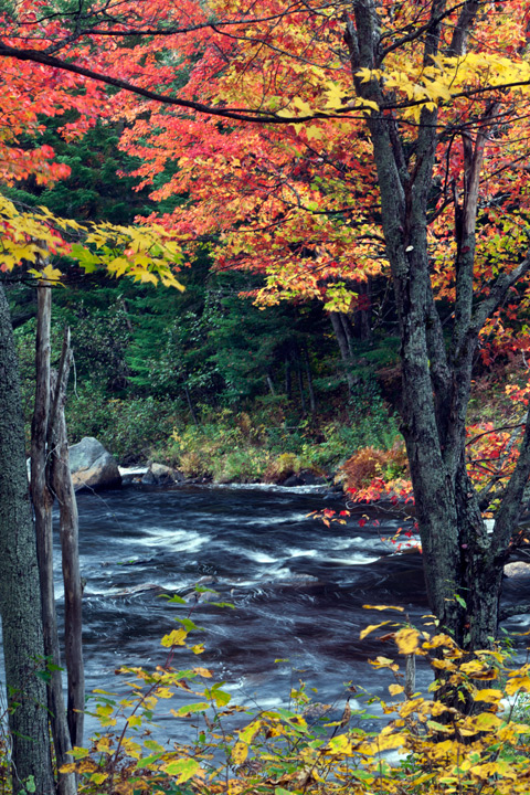 Adirondacks, photo