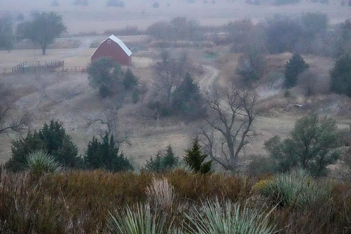 Fog, barn in background