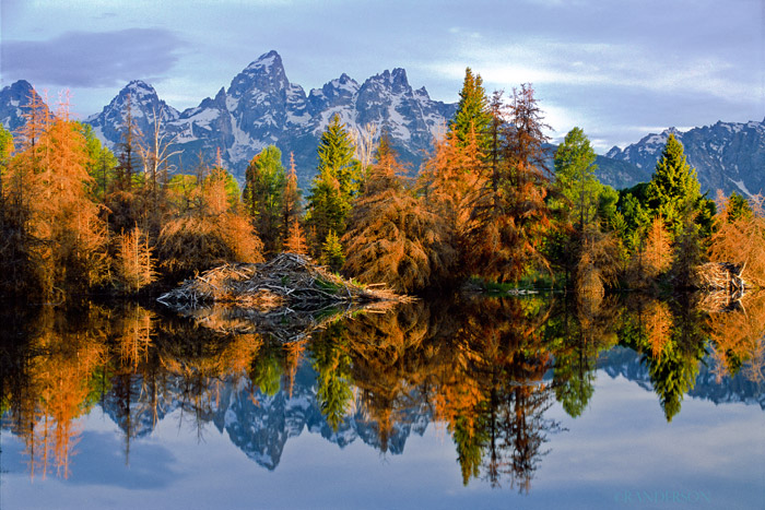 Schwabacher's Landing, Grand Teton National Park, photo