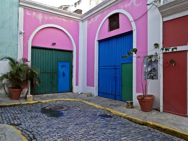 Pink, photo