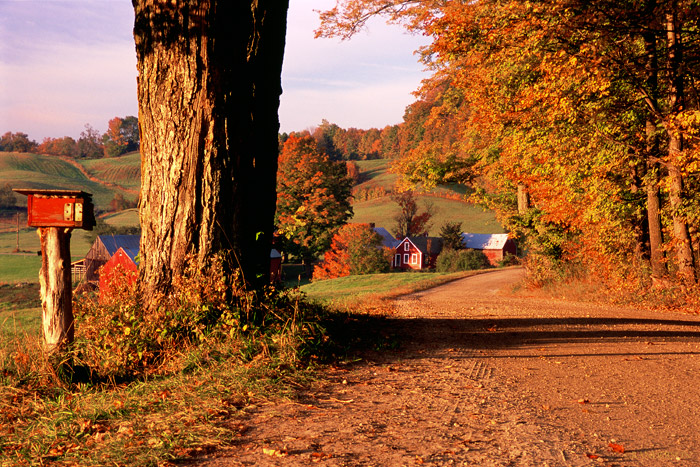 Shortly after sunrise, fall in Vermont