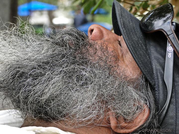 beard, photo